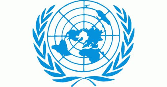 Анатолий Пахомов против ООН